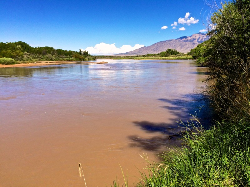 The Rio Grande Looking upriver from bosque above Alameda bridge. September 7, 2014 iPhone 5s Click for larger version.